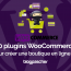 Plugins Woocommerce Creer Boutique En Ligne Pro