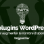 Plugin Wordpress Augmenter Nombre Abonnés Blog Site Web