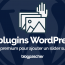 Plugin Wordpress Premium Ajouter Slider
