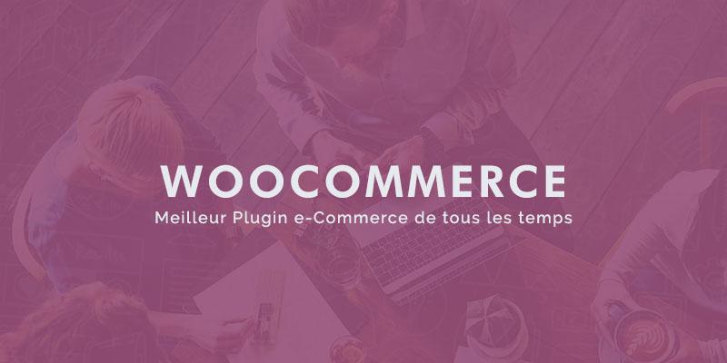 woocommerce blogpascher. Black Bedroom Furniture Sets. Home Design Ideas