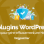 Plugin Wordpress Gérer Efficacement Newsletter